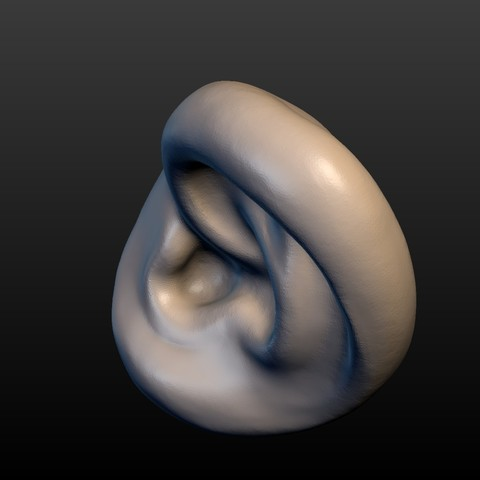 Ear-09.jpg Download 3DS file Round Ear • 3D printing template, Skazok