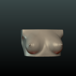 3D print model Woman's Breast, Skazok