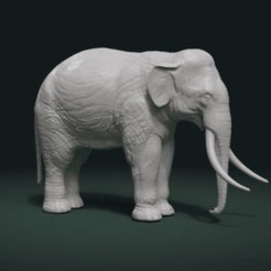 Download STL file Elephant, Skazok