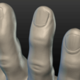 Hand-11.png Download 3DS file Hand • Object to 3D print, Skazok