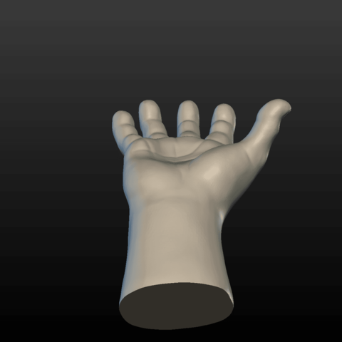 Hand-05.png Download 3DS file Hand • Object to 3D print, Skazok