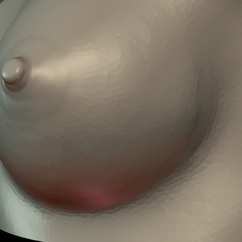 Breast-09.png Download 3DS file Woman's Breast • Design to 3D print, Skazok