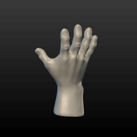 Hand-01.png Download 3DS file Hand • Object to 3D print, Skazok