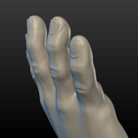 Hand-09.png Download 3DS file Hand • Object to 3D print, Skazok