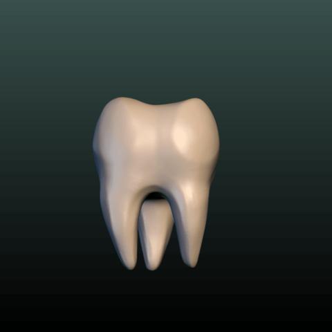 Tooth-01.png Download 3DS file Tooth • 3D printer design, Skazok