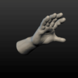 Hand-14.png Download 3DS file Hand • Object to 3D print, Skazok