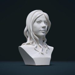 Download 3D model Woman head and Hairstyle, Skazok