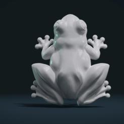 Download 3D print files Frog, Skazok