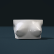 3D print model Woman's Breast, Skazok