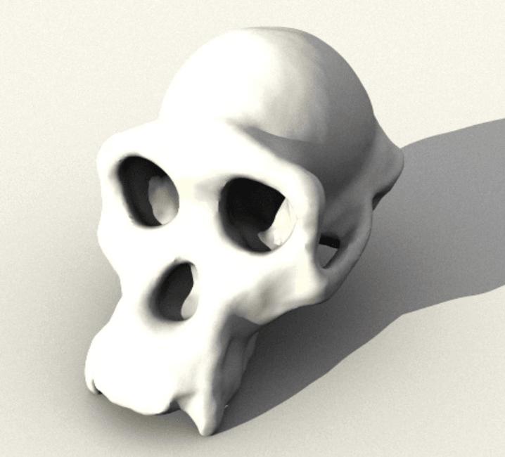 Capture d'écran 2018-05-14 à 14.29.23.png Télécharger fichier STL gratuit Crâne de chimpanzé • Objet pour impression 3D, sjpiper145