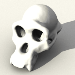 Free 3D printer designs Chimpanzee Skull, sjpiper145