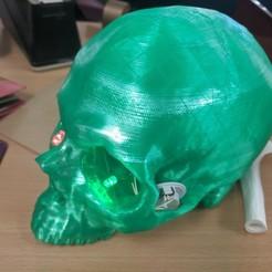 Télécharger objet 3D gratuit Tomodensitométrie du crâne avec cavité cérébrale, sjpiper145