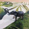 Download free STL file Elephant, sjpiper145