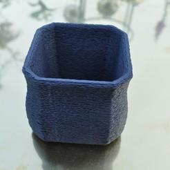 Impresiones 3D gratis Planta de 8 lados o maceta alpina, edwardo