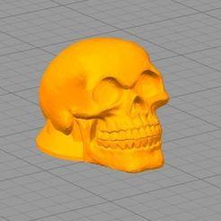 Download free 3D model Skull Ampli knob, KlausGargitter