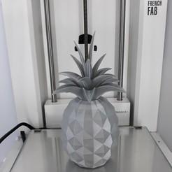 Imprimir en 3D Ananas, MathieuM3D