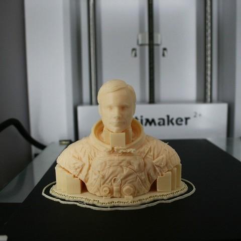 d100b6df2e2bab18ad9b048f65433ec4_display_large.jpg Download free STL file Astronaut Bust • 3D printing design, LSMiniatures