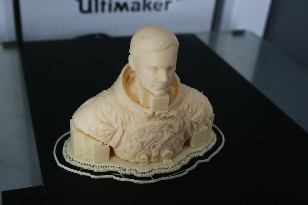 2347d0c6a55d8eb59a6359c2757a5ec7_display_large.jpg Download free STL file Astronaut Bust • 3D printing design, LSMiniatures