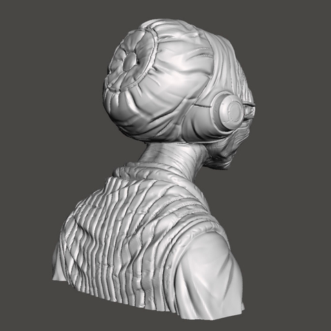 Maz bust, highly detailed Mudbox sculpt