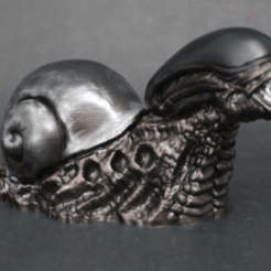 kk.png Download free STL file Snailien (snail-alien xenomorph mashup) • 3D printable model, XTG