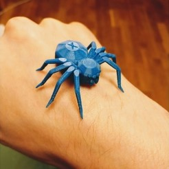 6928c23bc909c860aad99a4db033c684_preview_featured.jpg Download free STL file Torture Spider, 3D-printer torture test - overhangs - cooling - retraction • 3D printing design, printingotb