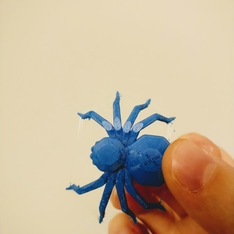bbf6f0caa369d743465bd0b18938b3d3_preview_featured.jpg Download free STL file Torture Spider, 3D-printer torture test - overhangs - cooling - retraction • 3D printing design, printingotb