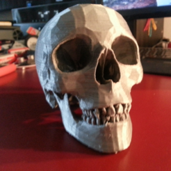 Capture d'écran 2017-07-26 à 11.30.22.png Download free STL file Human Skull • 3D print model, JamieLaing