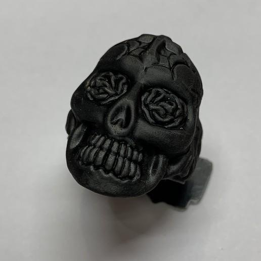 Impresiones 3D anillo craneal, Janusz