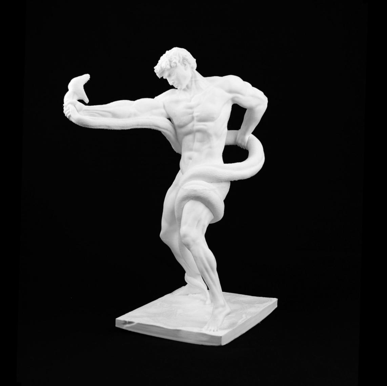 Capture d'écran 2017-08-01 à 12.45.16.png Download free STL file Athlete Wrestling a Python • 3D print design, Cool3DModel