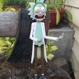 "Descargar Modelos 3D para imprimir gratis Rick Sanchez, figura de Rick y Morty, ""Peace among worlds""., Anthrobones"