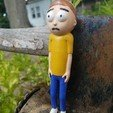 Free 3D file Morty Smith [Rick and Morty], Anthrobones