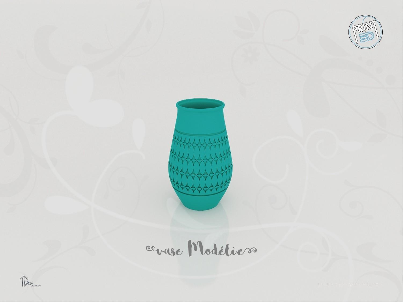 vase_modelie_present01.jpg Download STL file Vase Model • 3D printable design, Tibe-Design