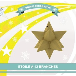 Free 3D printer designs Star with 12 branches, Tibe-Design