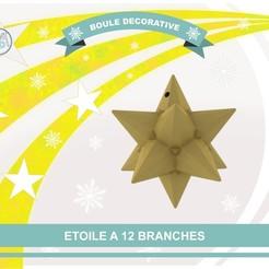 Descargar Modelos 3D para imprimir gratis Estrella de 12 ramas, Tibe-Design