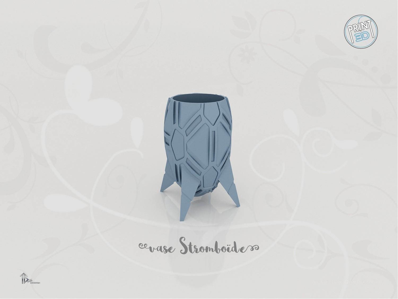 vase_stromboide_present01.jpg Download STL file Stromboid Vase • 3D printable object, Tibe-Design