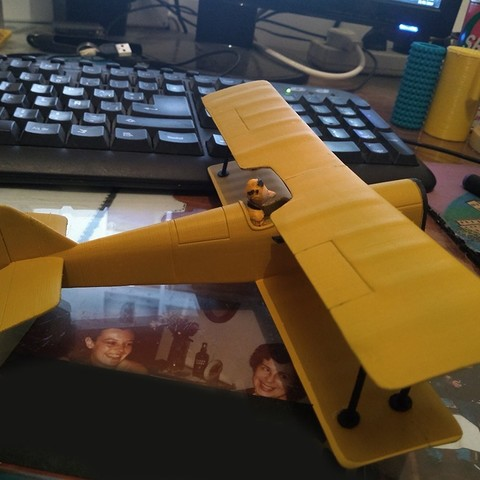 Free 3D printer designs Plane Icarus Lupin, Nico_3D