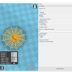 spiderw.jpg Télécharger fichier STL gratuit Araignée et sa toile • Objet pour imprimante 3D, albino