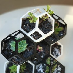 plantygon1.jpg Download free STL file Plantygon - Modular Geometric Stacking Planter for Succulents • Template to 3D print, printfutura