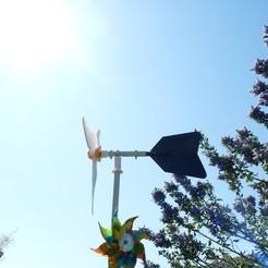 Descargar diseños 3D gratis turbina eólica de bajo costo (derivación y su apoyo), Pachypodium