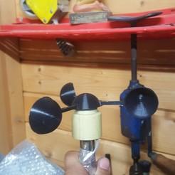20190616_225544.jpg Download free STL file anemometer (otio) spare spoon • 3D printing design, Pachypodium