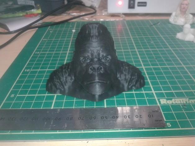 20140627_092049_preview_featured.jpg Télécharger fichier STL gratuit Gorilla Bust • Plan pour impression 3D, Masterclip