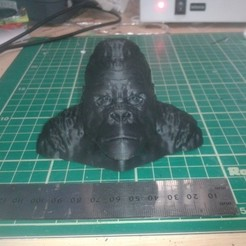 20140627_092049_preview_featured.jpg Télécharger fichier STL gratuit Gorilla Bust • Plan pour impression 3D, Masterclip