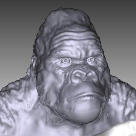gorilla bust.jpg Télécharger fichier STL gratuit Gorilla Bust • Plan pour impression 3D, Masterclip