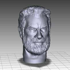 OLD LOGAN INSPIRITED FIGURE HEAD STL file, Masterclip