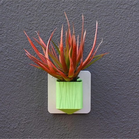 "lowres_YS7WRHGHOF.jpg Download free STL file 2"" Planter with Spout • 3D printer design, DDDeco"