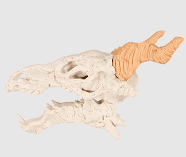 Capture d'écran 2017-09-05 à 17.54.02.png Download free STL file Dragon Skull • 3D printable object, JackieMake