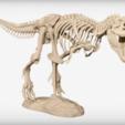 archivos stl Esqueleto de T-Rex gratis, JackieMake