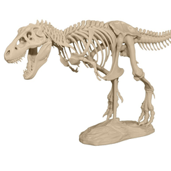 Download free 3D printing designs T-Rex Skeleton, JackieMake