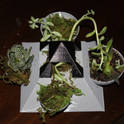 Free 3d printer model Pyramid Succulent Planter, jbrum360