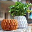 Download 3D printer designs Simple Loft Vase Large, DI_joseantoniosv
